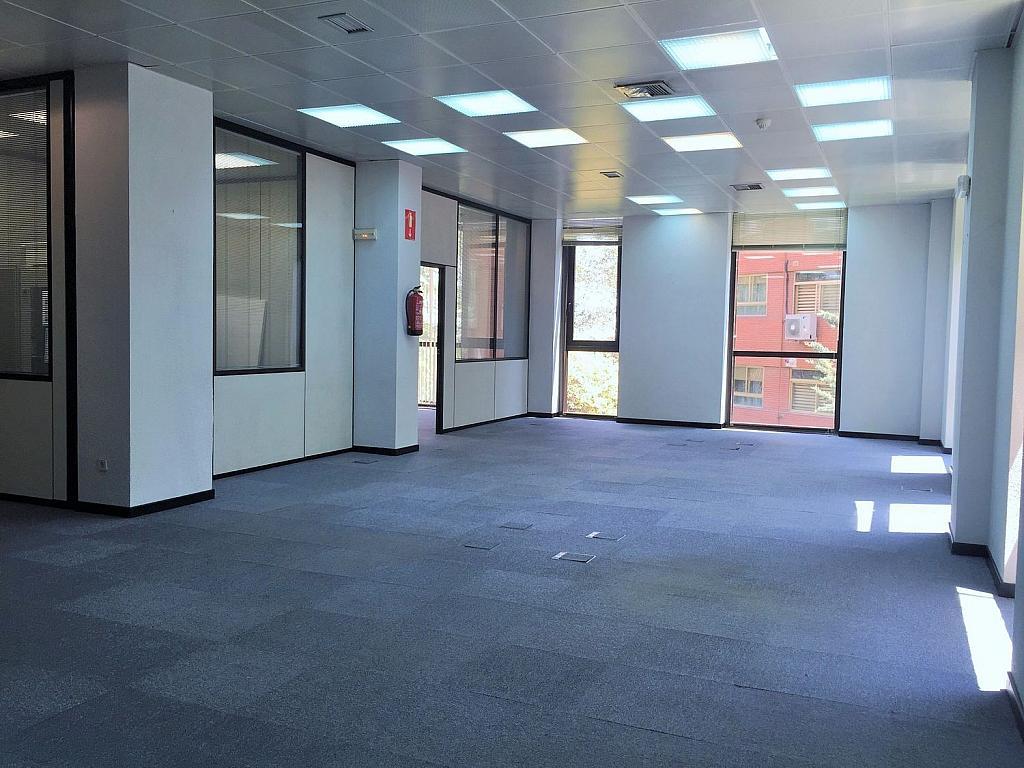 Oficina en alquiler en calle De Caleruega, Costillares en Madrid - 341277011