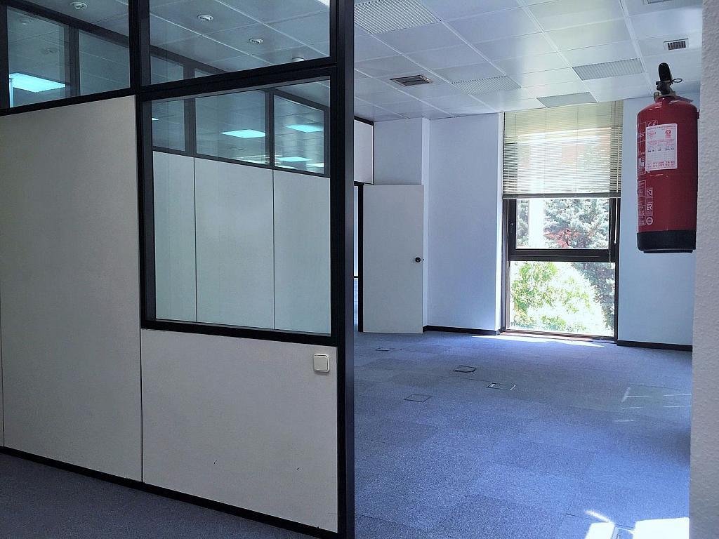 Oficina en alquiler en calle De Caleruega, Costillares en Madrid - 341277026
