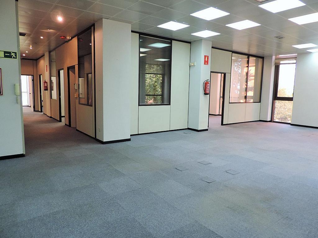 Oficina en alquiler en calle De Caleruega, Costillares en Madrid - 341277029