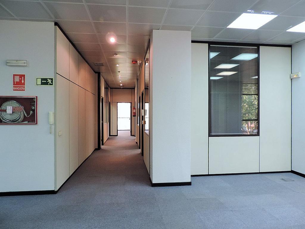 Oficina en alquiler en calle De Caleruega, Costillares en Madrid - 341277041