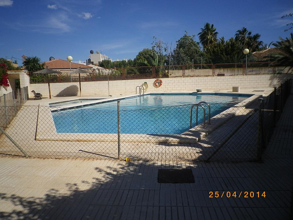 Bungalow en alquiler de temporada en calle Playa de Muchavista, Playa Mucha Vista en Campello (el) - 221019159