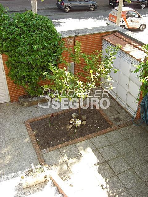 Casa en alquiler en calle Clavel, Móstoles - 278902360