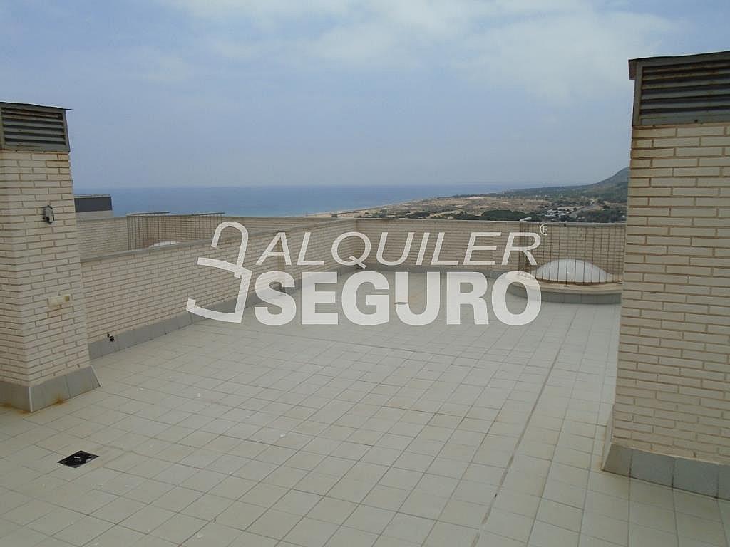 Ático en alquiler en calle Albacete, Elche/Elx - 281347522