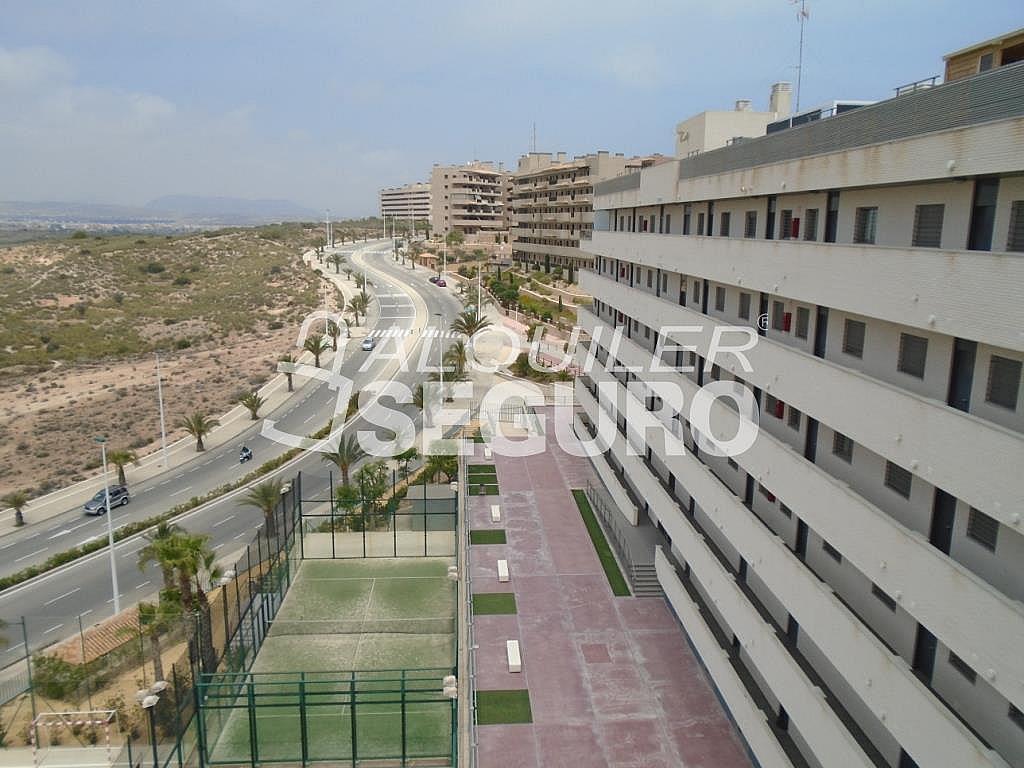 Ático en alquiler en calle Albacete, Elche/Elx - 281347543