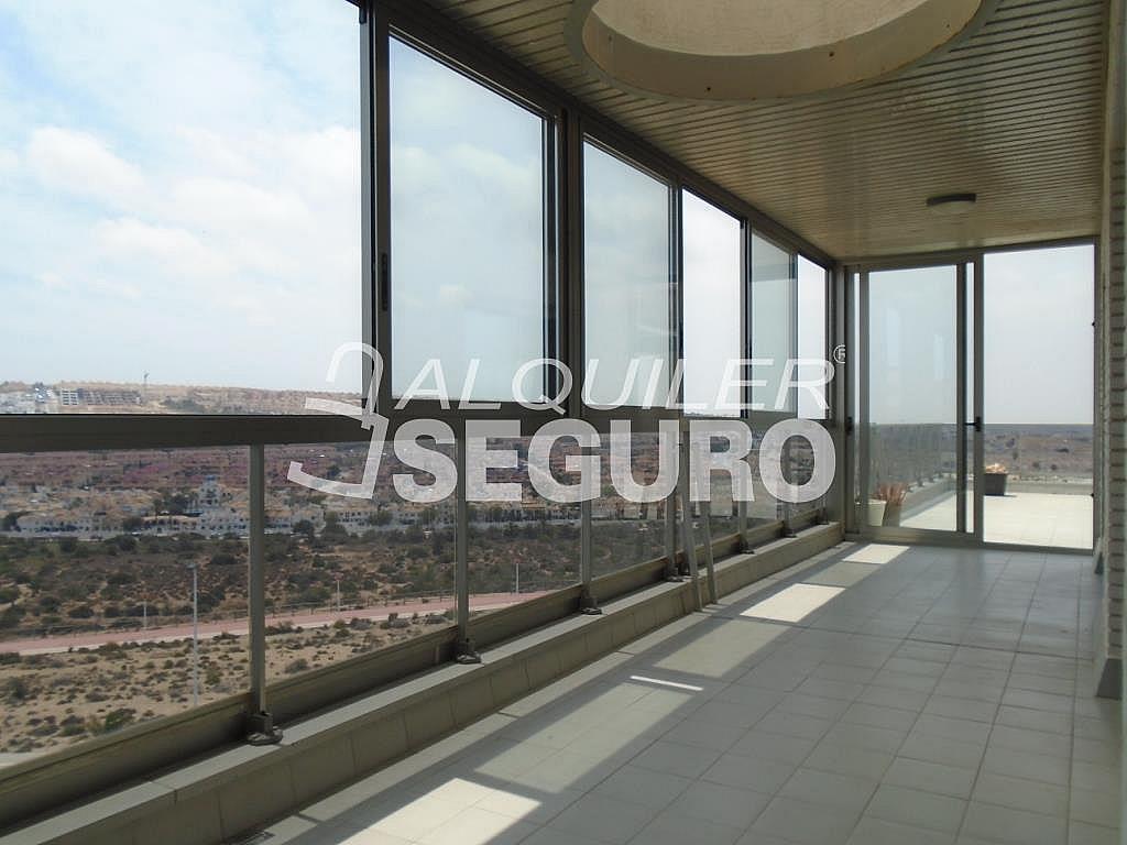 Ático en alquiler en calle Albacete, Elche/Elx - 281347630