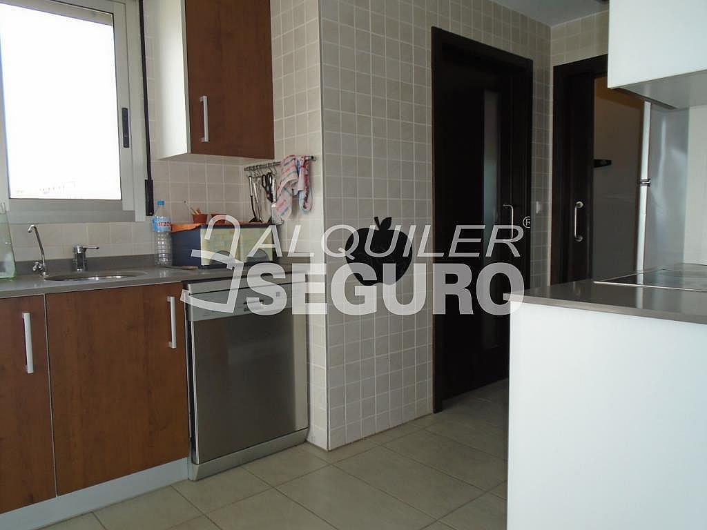 Ático en alquiler en calle Albacete, Elche/Elx - 281347663