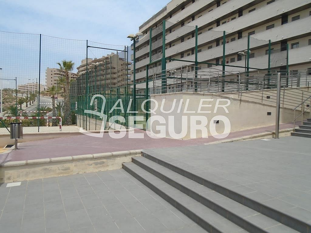 Ático en alquiler en calle Albacete, Elche/Elx - 281347693