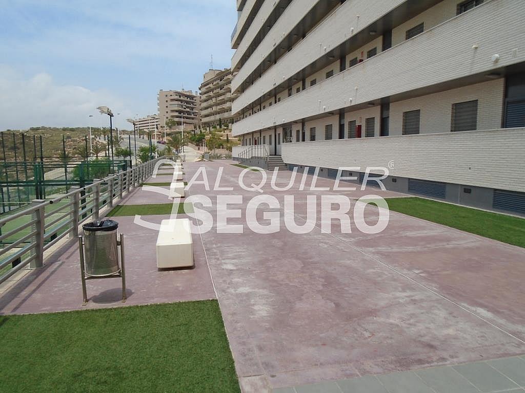 Ático en alquiler en calle Albacete, Elche/Elx - 281347696