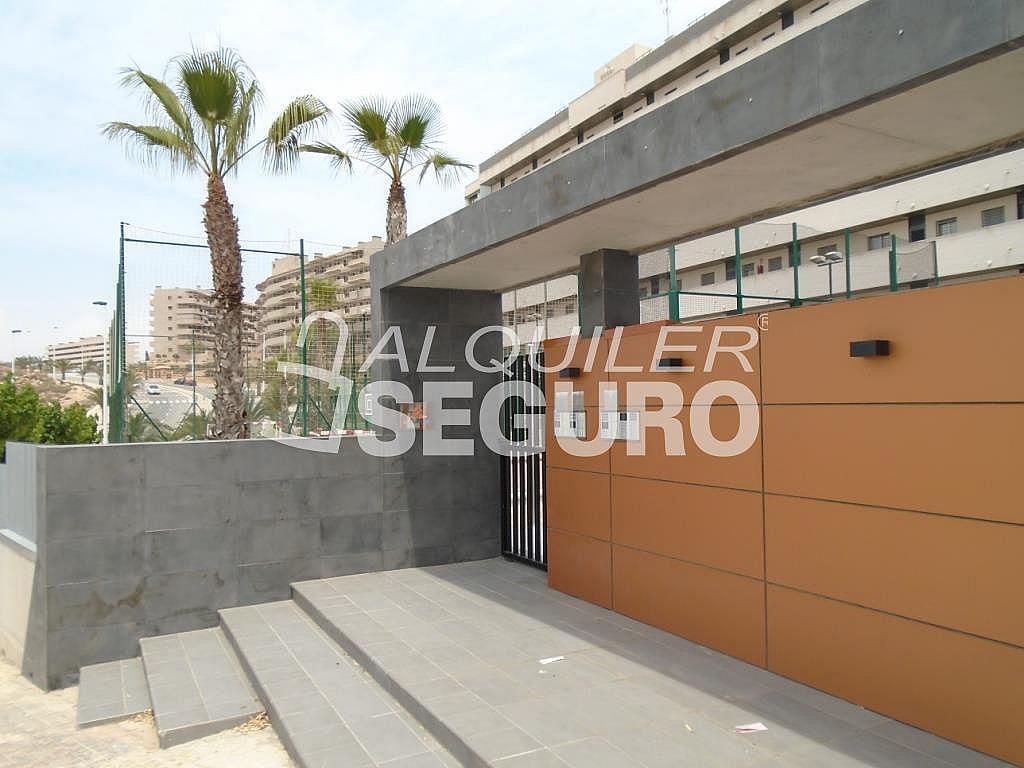 Ático en alquiler en calle Albacete, Elche/Elx - 281347729