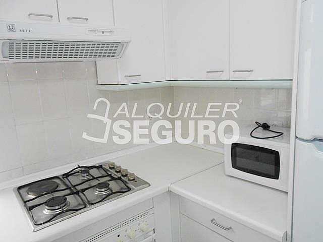 Piso en alquiler en calle Lagasca, Recoletos en Madrid - 315141212