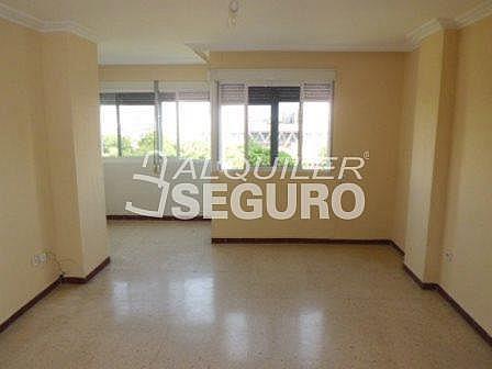 Piso en alquiler en calle De Febrero, San Pablo en Sevilla - 317889275