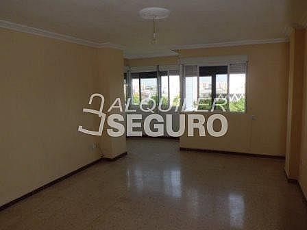 Piso en alquiler en calle De Febrero, San Pablo en Sevilla - 317889278
