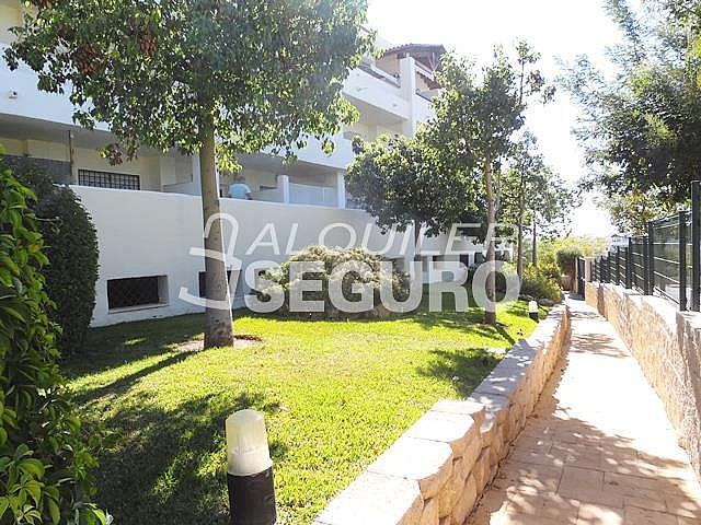 Piso en alquiler en calle San Rafael, Benalmádena Costa en Benalmádena - 318697163