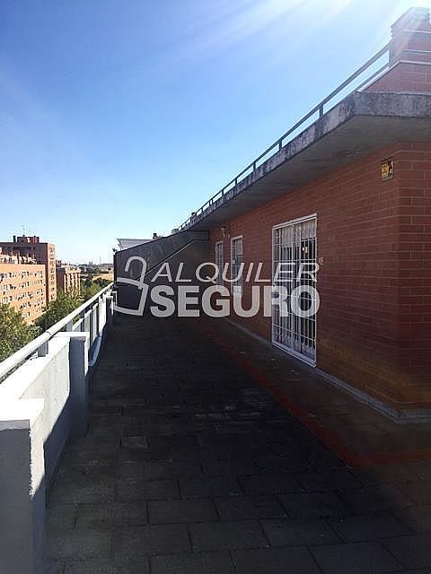 Ático en alquiler en calle Maria Guerrero, Loranca en Fuenlabrada - 323326017
