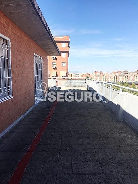 Ático en alquiler en calle Maria Guerrero, Loranca en Fuenlabrada - 323326023