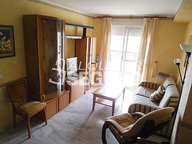 Piso en alquiler en calle Almuñecar, Benalmádena Costa en Benalmádena - 331743623