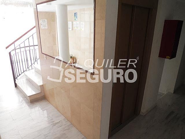 Piso en alquiler en calle Almuñecar, Benalmádena Costa en Benalmádena - 331743653
