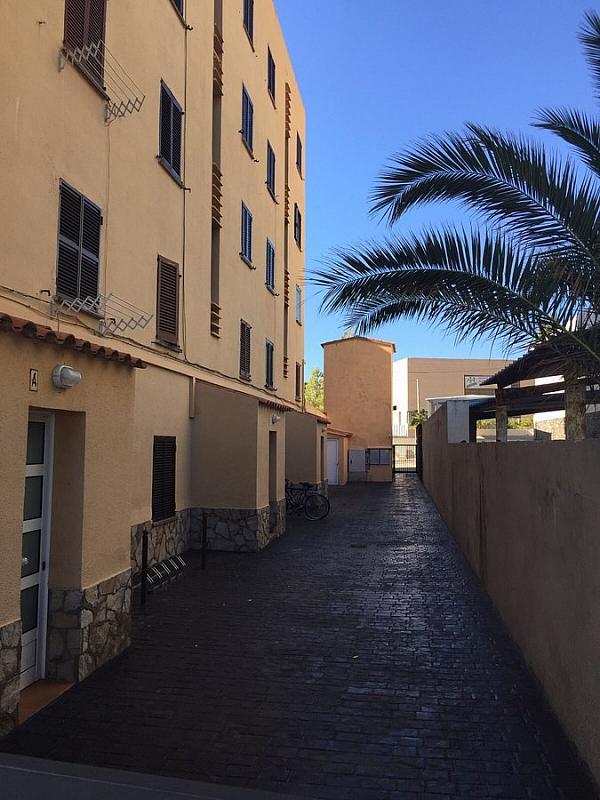 Patio delantero - Apartamento en venta en Escala, L´ - 221444253
