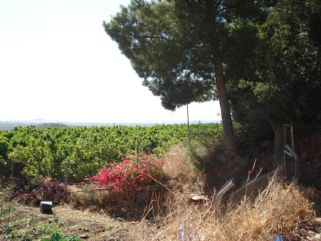 Jardín - Casa rural en alquiler en calle , Sagunto/Sagunt - 138876873