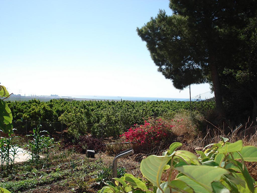 Jardín - Casa rural en alquiler en calle , Sagunto/Sagunt - 138876986