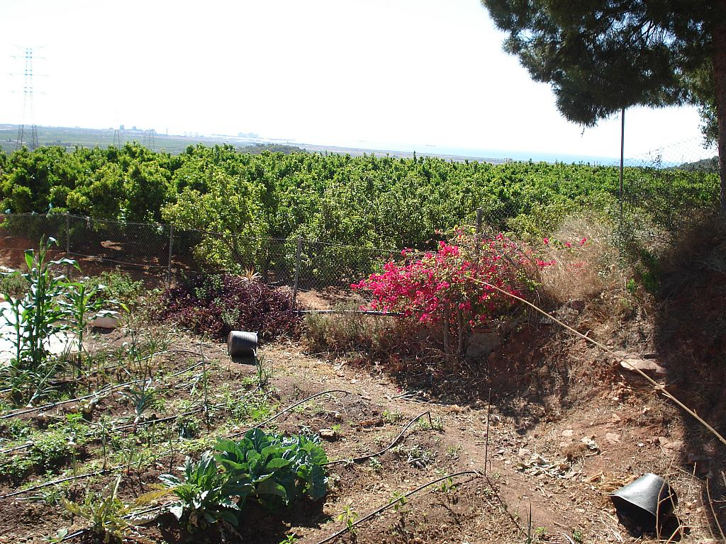 Jardín - Casa rural en alquiler en calle , Sagunto/Sagunt - 138877003