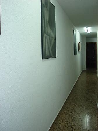 Pasillo - Piso en alquiler en calle , Sagunto/Sagunt - 143883407