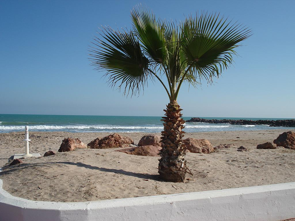 Entorno - Piso en alquiler en calle , Puig, Del (playa) - 199871539
