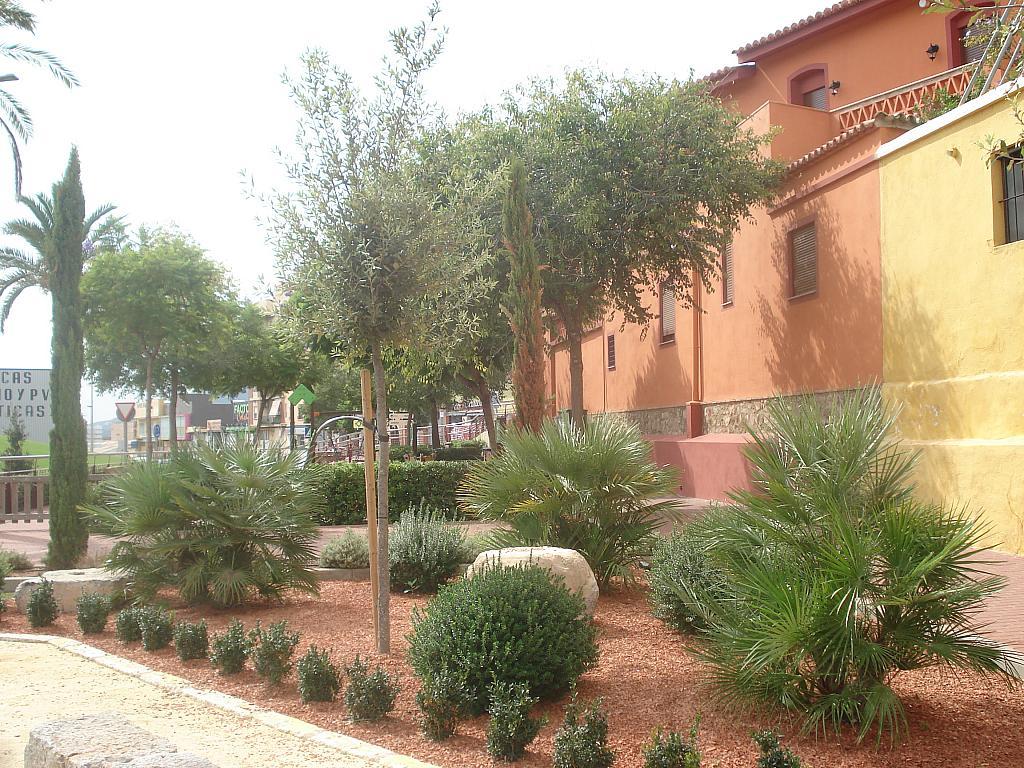Casa adosada en alquiler en calle , Antigua Moreria en Sagunto/Sagunt - 214375866