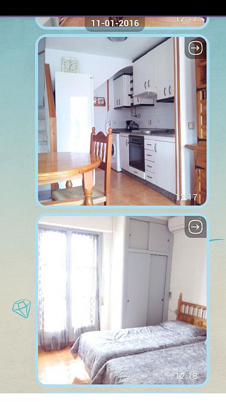 Cocina - Apartamento en alquiler de temporada en Santa Pola - 243417188