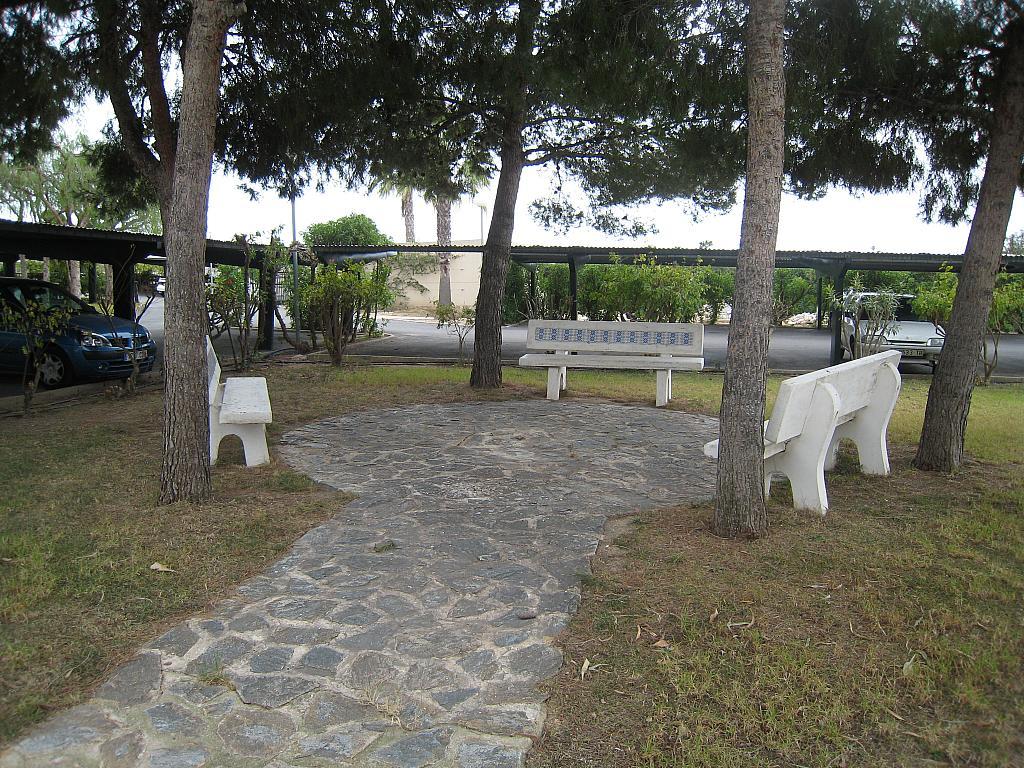 Jardín - Apartamento en venta en Urbanova en Alicante/Alacant - 243422061