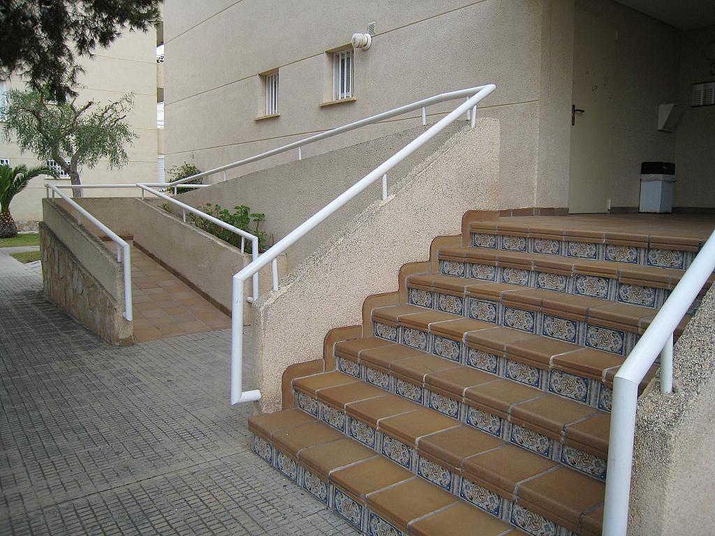 Zonas comunes - Apartamento en venta en Urbanova en Alicante/Alacant - 243422235