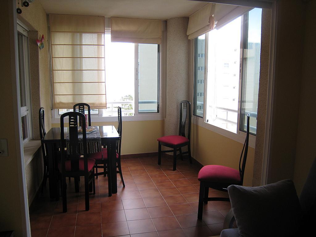 Terraza - Apartamento en venta en Urbanova en Alicante/Alacant - 243423771