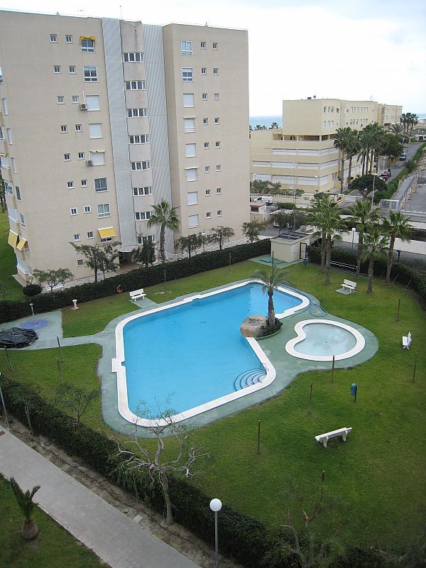 Piscina - Apartamento en venta en Urbanova en Alicante/Alacant - 243423922