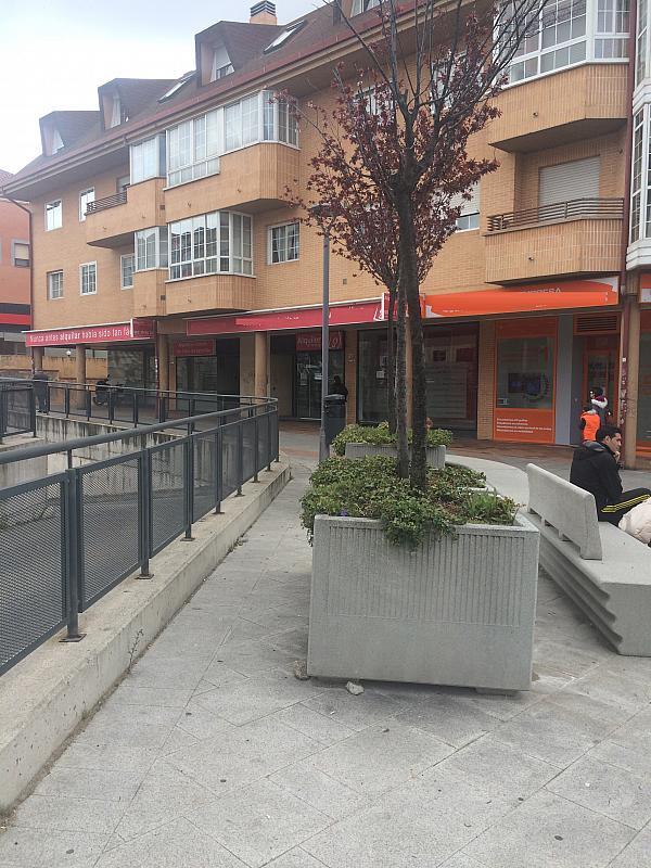 Local comercial en alquiler en calle Honorio Lozano, Collado Villalba - 258913116