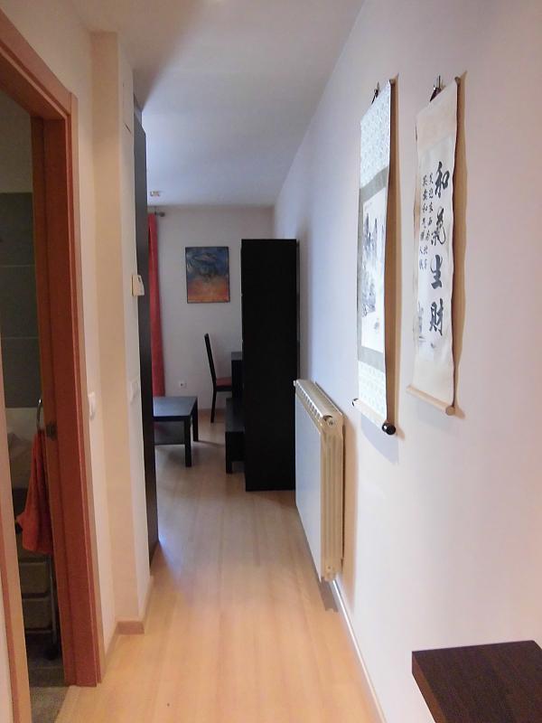Pasillo - Apartamento en alquiler opción compra en Miguelturra - 205058136