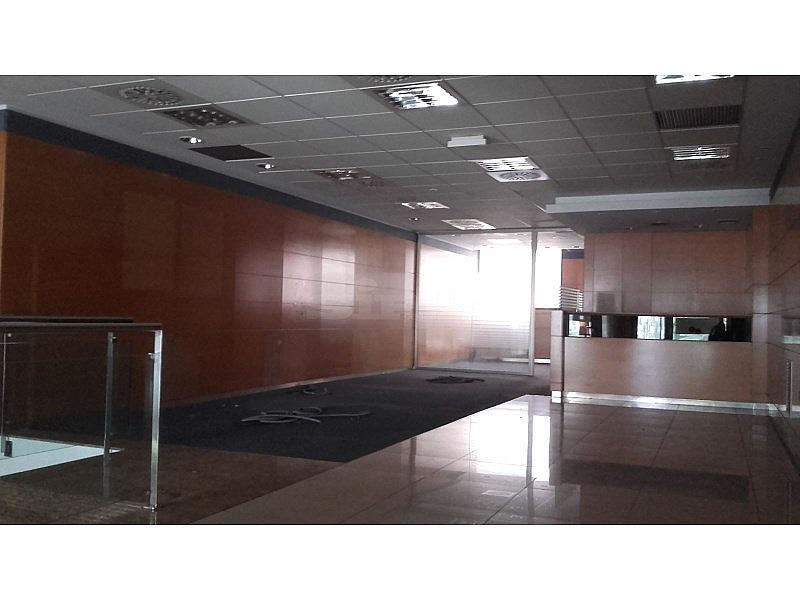 20160601_122328 - Local comercial en alquiler en Vilafranca del Penedès - 294221408