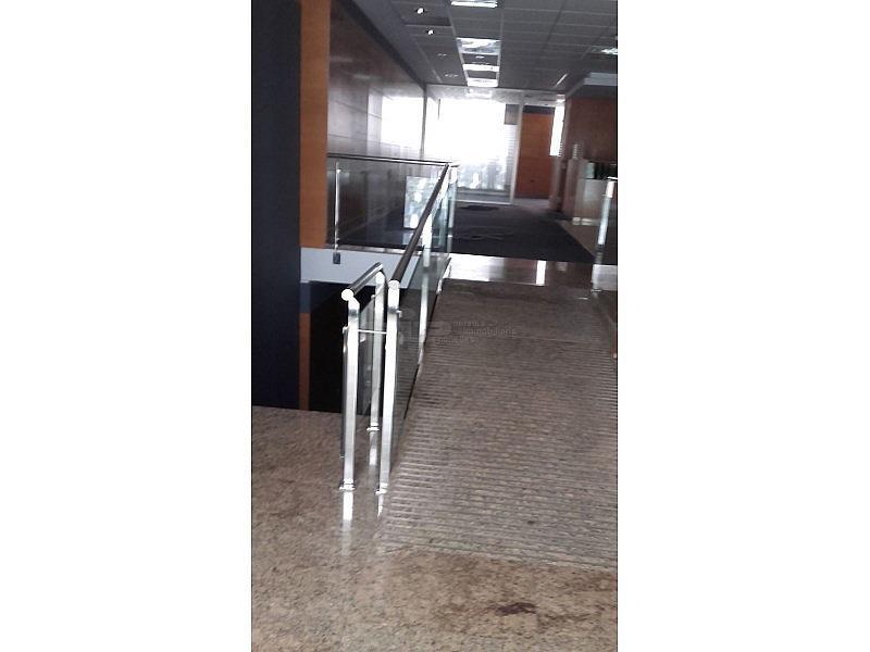 20160601_122632 - Local comercial en alquiler en Vilafranca del Penedès - 294221444