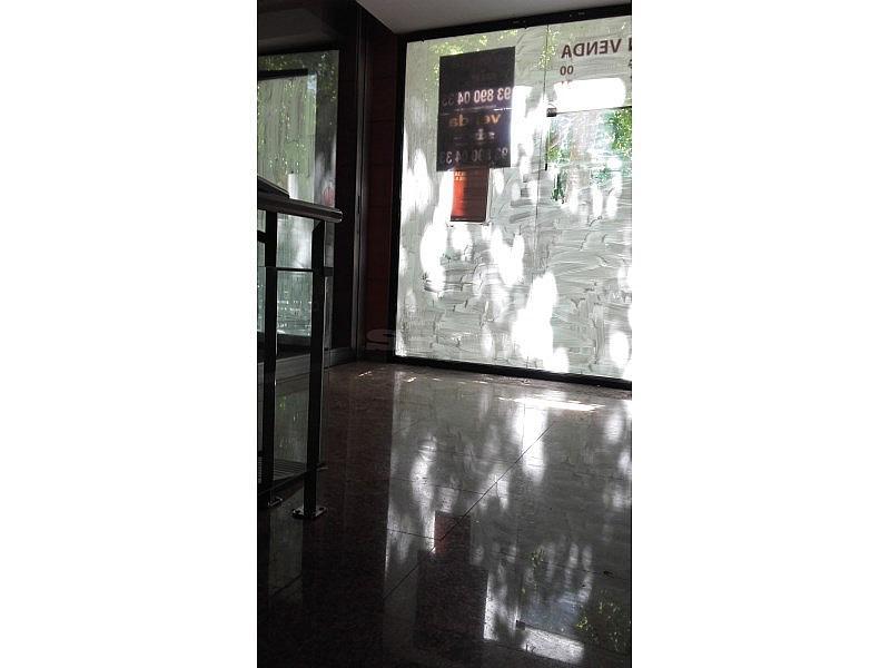 20160601_123057 - Local comercial en alquiler en Vilafranca del Penedès - 294221450