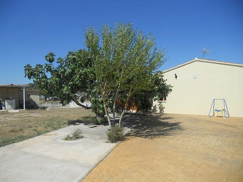 DSCN2205.JPG - Casa en alquiler en Sant Martí Sarroca - 315034066