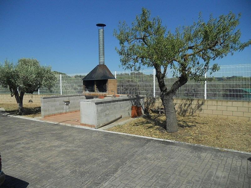 DSCN2214.JPG - Casa en alquiler en Sant Martí Sarroca - 315034081