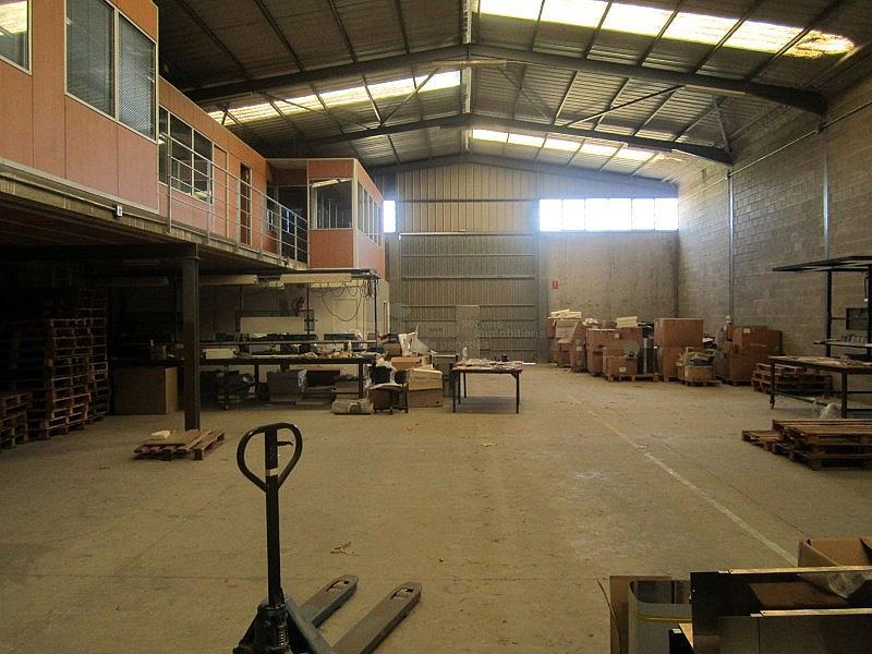 IMG_1718.JPG - Nave industrial en alquiler opción compra en calle Olerdola Poligono Industrial Sant Pere Molanta, Olèrdola - 214949490