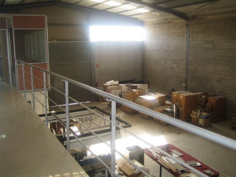 IMG_4675.JPG - Nave industrial en alquiler opción compra en calle Olerdola Poligono Industrial Sant Pere Molanta, Olèrdola - 214949502