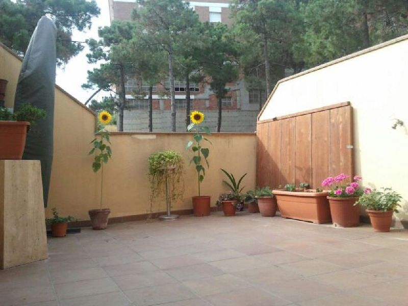 Terraza - Piso en alquiler en calle Sant Ramon, Barrio Sant Lluís en Palafolls - 118818888
