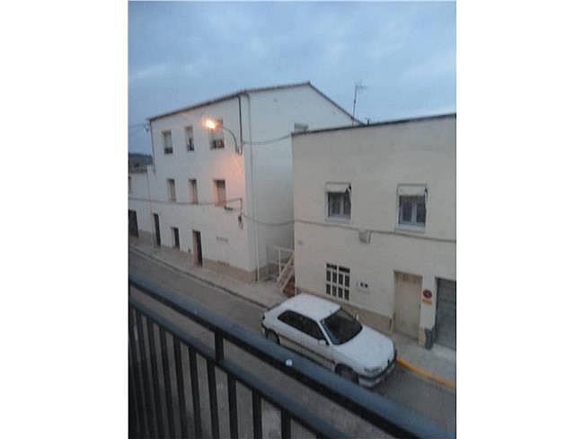 Piso en alquiler en calle Delfi Ortiz, Sant Pere de Riudebitlles - 327075495