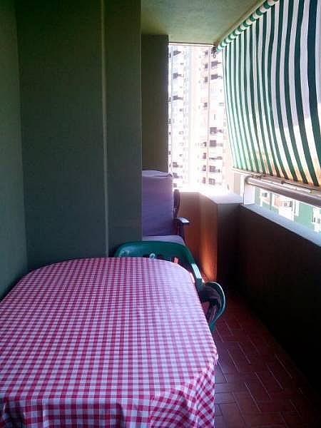 Foto - Piso en alquiler en calle Boliches, Los Boliches en Fuengirola - 224083430
