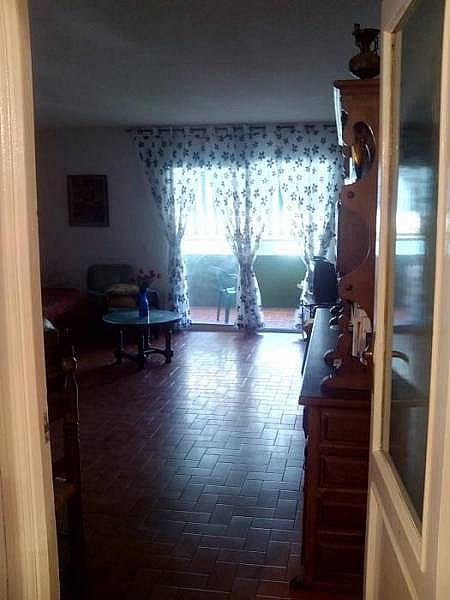 Foto - Piso en alquiler en calle Boliches, Los Boliches en Fuengirola - 224083433