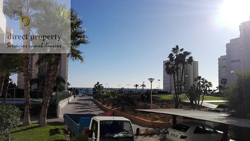 Vistas - Piso en alquiler en calle Músico Juan la Torre Baeza, El Palmeral - Urbanova - Tabarca en Alicante/Alacant - 226656279