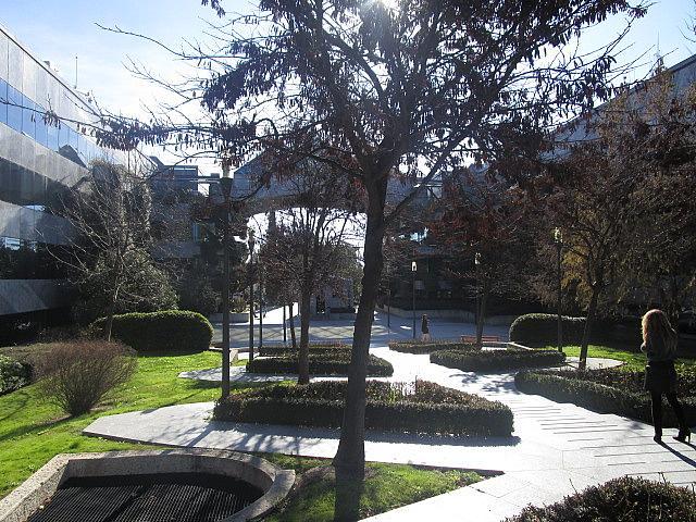 Oficina en alquiler en calle Europa, Zona Avenida de Europa en Pozuelo de Alarcón - 242379232