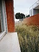 Patio trasero - Casa adosada en alquiler en calle Canteres, Serra - 299268714