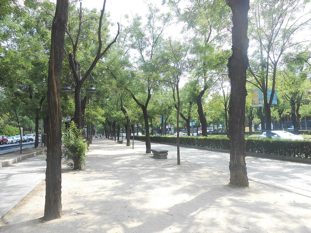 Piso en alquiler en Castellana en Madrid - 353504385
